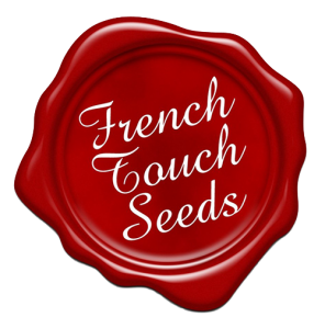 french-touch-500x5002