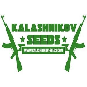 kalashnikov-seeds_download_cat_thumb_cdc6763e-d7b6-41ed-8357-11f59cdd6127_1024x1024143