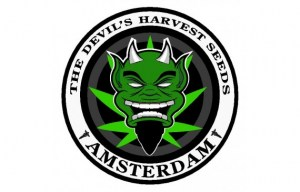large-the-devils-harvest-seeds-logo39